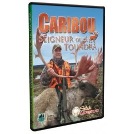Caribou Seigneur de la Toundra